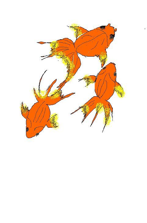 [8] 金魚